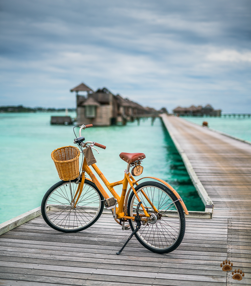 Biking at Gili Lankanfushi, Maldives