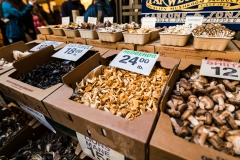 Selection of Mushrooms at Far West Fungi - San Francisco Ferry Building - California